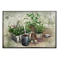 Fußmatte Easy Clean Summer Herbs
