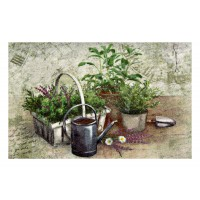 Fußmatte Clean Keeper Summer Herbs