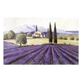 Fußmatte Gallery Provence
