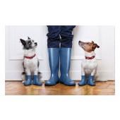 Fußmatte Gallery Hunde-Gummistiefel
