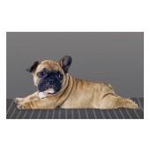 Fußmatte Deco & Wash Bulldogge liegend