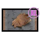Fußmatte Deco & Wash Ahornblatt XL