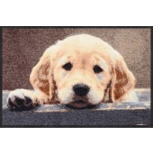 Fußmatte Nosy Dog