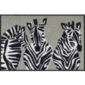 Fußmatte Zebra grau