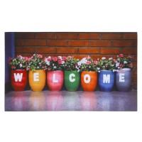 Fußmatte Gallery welcome flower pots