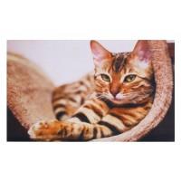Fußmatte Gallery cat