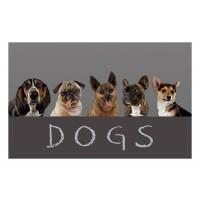 Fußmatte Gallery Dogs