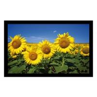 Fußmatte Deco & Wash Sonnenblumen