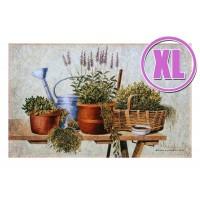 Fußmatte Gallery Garden herbs XL
