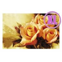 Fußmatte Gallery Rose sweet love XL