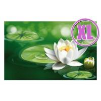 Fußmatte Gallery Wasserlilie XL