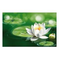Fußmatte Gallery Wasserlilie