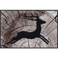 Fußmatte Passing Deer Salonloewe