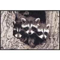 Fußmatte Little Racoons
