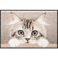 Fußmatte Nosy Cat