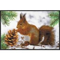 Fußmatte Eichhörnchen im Schnee