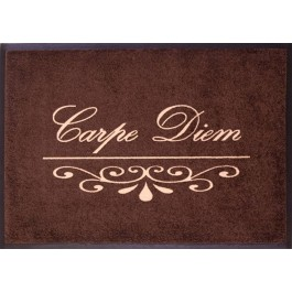 Fußmatte Easy Clean Mats Carpe Diem bordeaux