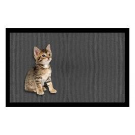 Fußmatte Deco & Wash Kätzchen
