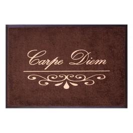 Fußmatte Easy Clean Mats Carpe Diem braun