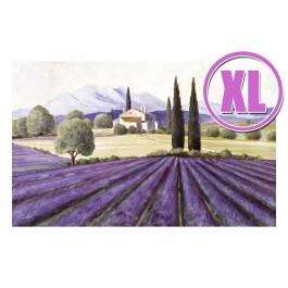 Fußmatte Gallery Provence XL