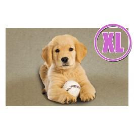Fußmatte Gallery Welpe mit Ball XL