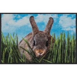 Fußmatte Nosy Rabbit