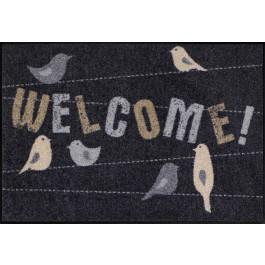 Fußmatte Salonloewe Welcome birds