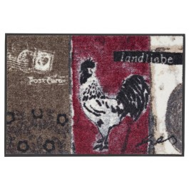 Fußmatte Salonloewe Anna Flores Landliebe 50cm x 75cm