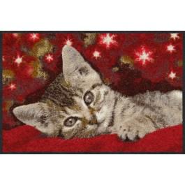 Fußmatte Christmas Cat